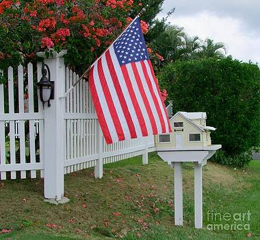 Mary Deal - The Flag by the Mailbox