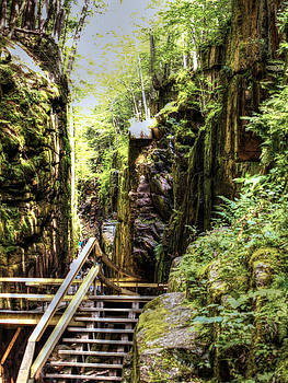 The Flume Gorge by Patrick Lombard
