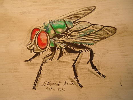 The fly by Fladelita Messerli-