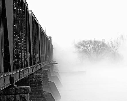 The Fog to Nowhere by Ann Sharpe