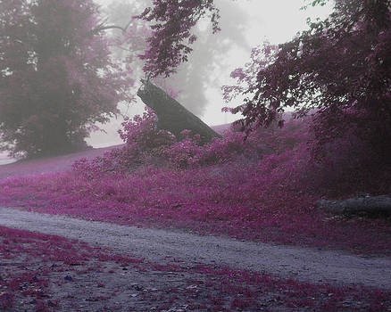 The Foggy Road by Cheryl Heffner