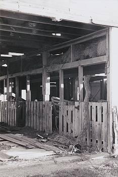 The Forgotten Barn by Kassie Nelson