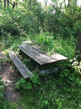 The forgotten Picnic Table by Rick Weiberg