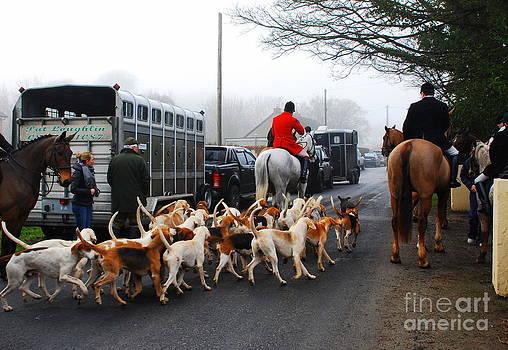 Joe Cashin - The Fox hounds