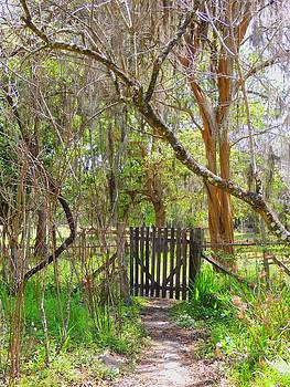 The Garden Gate by Judy  Waller