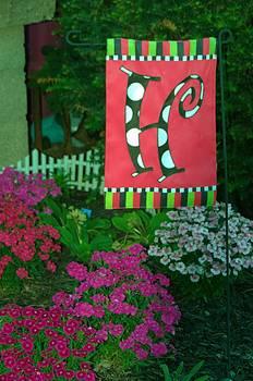 The Garden by Michael Sokalski