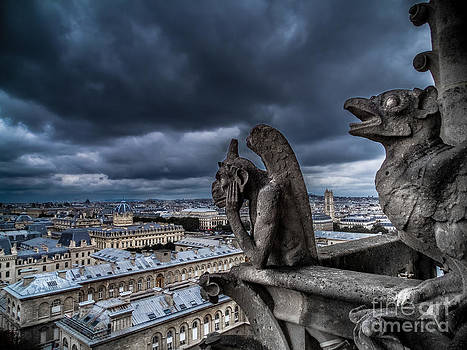 The Gargoyles of Notre-Dame de Paris - France by Corinne Johnston