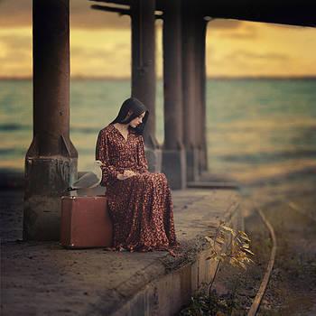 The girl and the seagull by Anka Zhuravleva