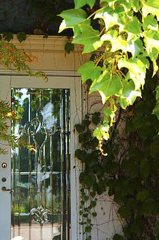The Glass Door by Danielle Allard