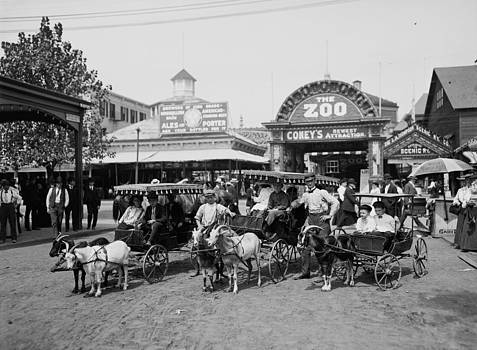 Steve K - The Goat Carriages Coney Island 1900