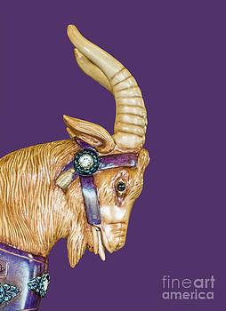 Barbara McMahon - The Goat Who Likes Purple