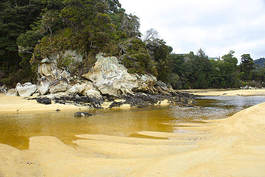 Venetia Featherstone-Witty - The Golden Sands of Kaiteriteri