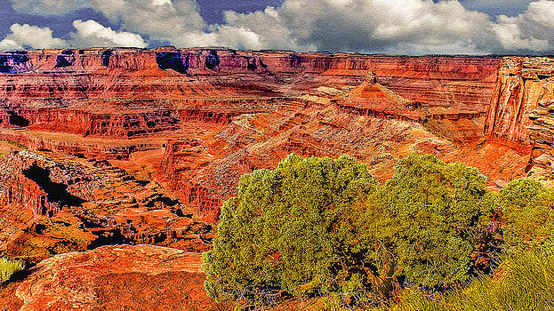 The Grand Canyon Dead Horse Point by Bob and Nadine Johnston