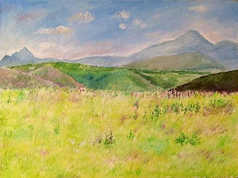 Aditi Bhatt - The grass is white