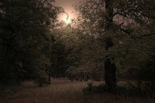 Nina Fosdick - The Graveyard