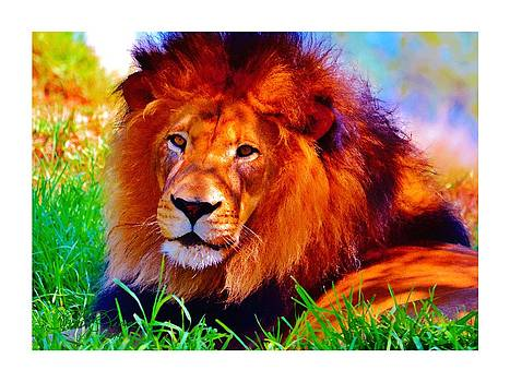 The Great Lion by Sharon  Lavoie