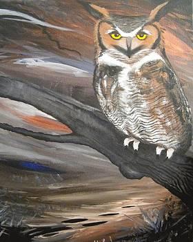 The Great Owl by Heather Pecoraro