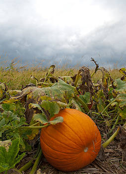 The Great Pumpkin by Wayne King