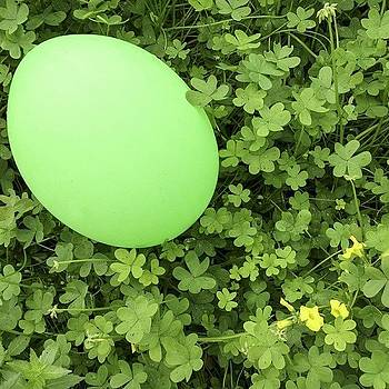 The Green Balloon by Steve Outram