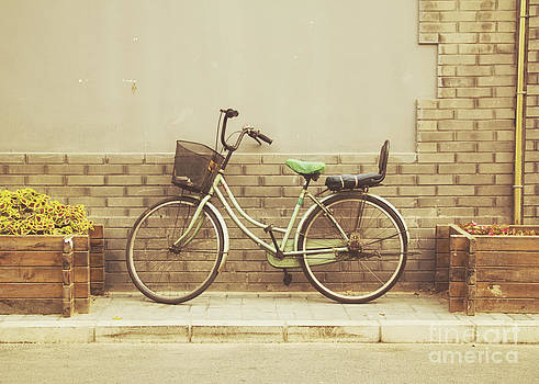 The Green Bicycle by Jillian Audrey Photography