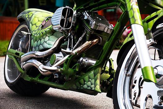 The Green monster by Svetoslav Sokolov