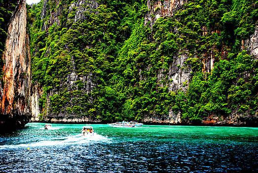 The Green Sea by Vijinder Singh