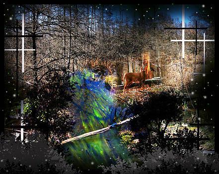The Green Stream by Andrew Sliwinski