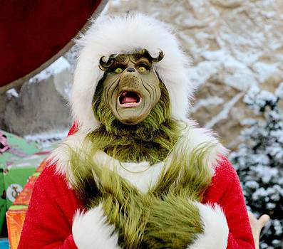 The Grinch by Emily Fidler