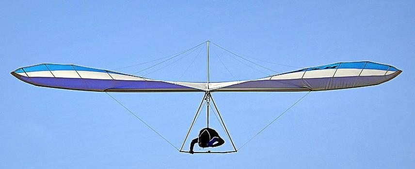 The Hang Glider by AJ  Schibig