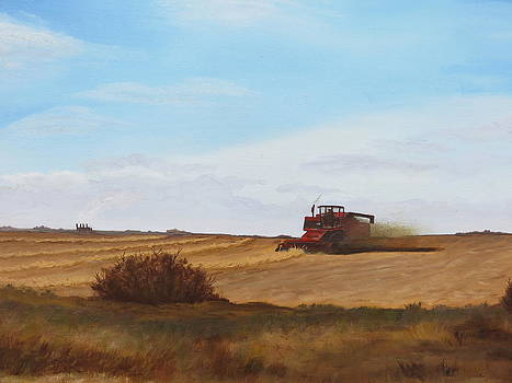 The Harvest by Linda Koch