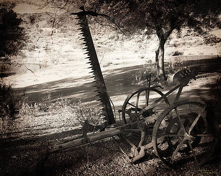 The Harvester by Dale Simmons