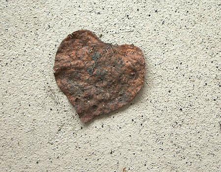 The Heart Leaf by Danielle Allard