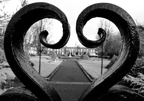 John Daly - The Heart of Dublin