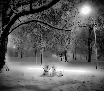 The Heart of Winter by SCB Captures