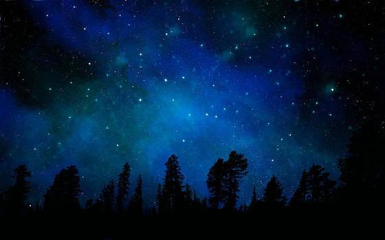 Frank Wilson - The Heavens are Declaring Gods Glory Mural