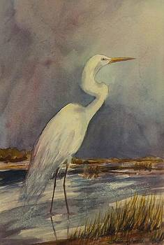 The Heron by Tricia Mcdonald