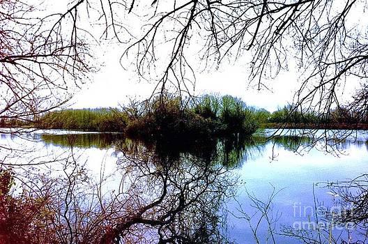 The Hidden Lake by John Williams