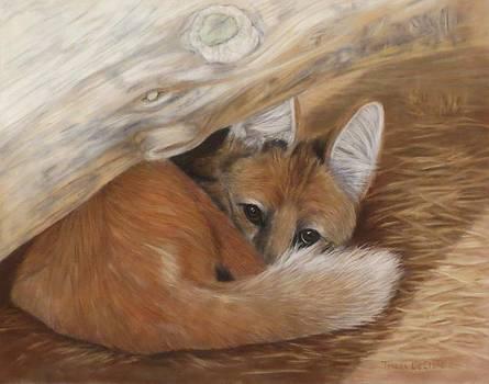 The Hiding Place by Teresa LeClerc