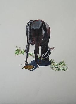 Usha Shantharam - The Holy Cow and Dung 2