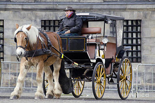 Pravine Chester - The Horse Buggy