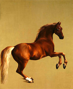 The Horse by George Stubbs