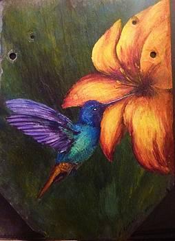 The Hummingbird by Karen Lucas