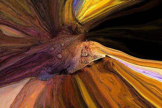 The Iris by John Stuart Webbstock
