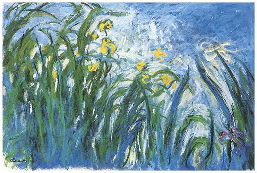 Claude Monet - The Irises