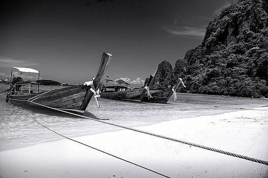 The Island by Robin Cuervo
