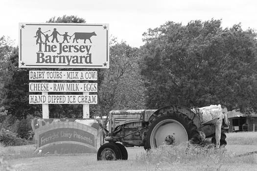 The Jersey Barnyard by Rod Andress