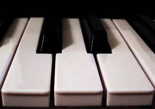 The Keys by Laurie Poetschke