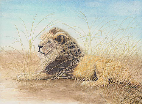 The king by Marshall Bannister