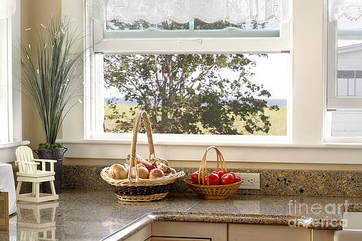 The kitchen window by Jo Ann Snover
