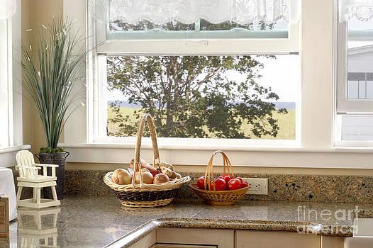 Jo Ann Snover - The kitchen window